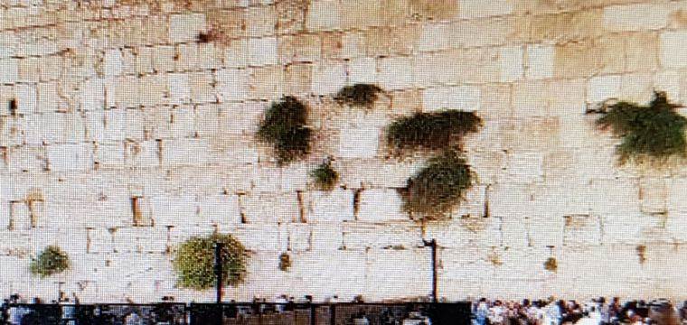 .The Western Wall Tunnels 360 LIVE